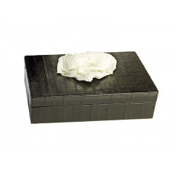 Rectangular tissue box with opening in the smooth lid