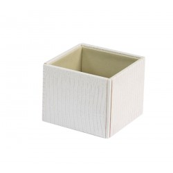 Square box with no lid or dividers