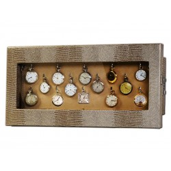 Wall display case for 14 chain watches