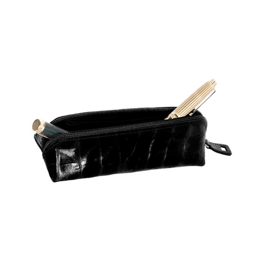 Fountain pen Case