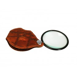 Magnifying glass with custody